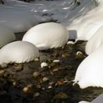 река Б.Мойва не замерзает