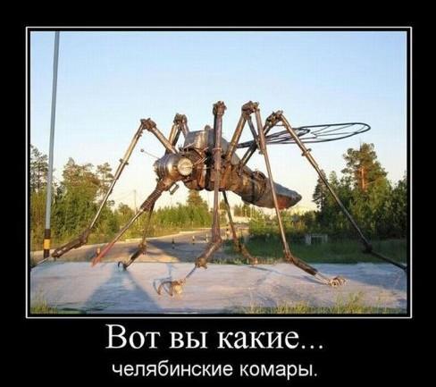 Челябинские комары настолько суровы