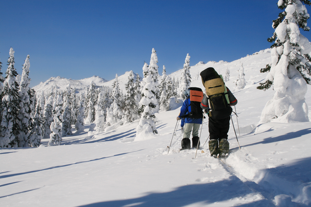 На лыжне (Ю.Урал)