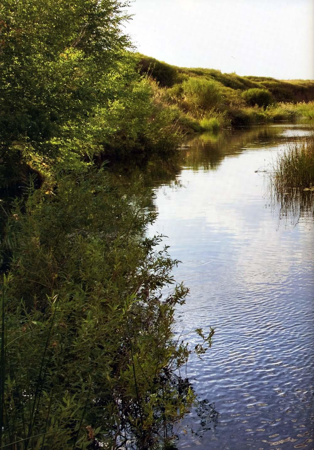 Аркаим, река Карагайка