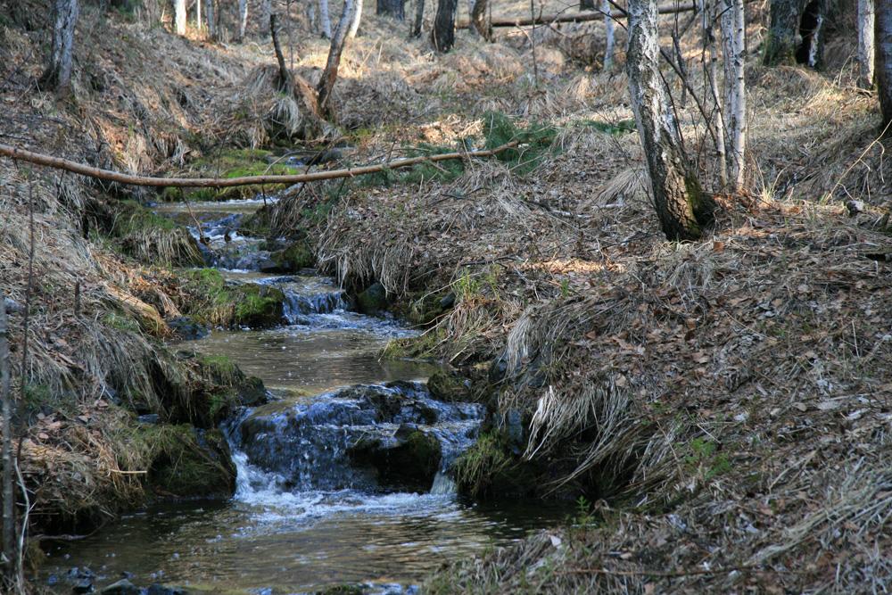 истоки реки Миасс