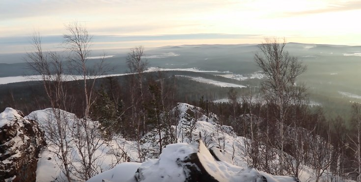 volchixa-zimoj