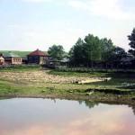 Сплав дров по р. Усолке, впадающей в Чусовую у села Верхние Городки.