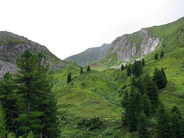 Подступы к перевалу Тофаларский Ключ-Пихтовый