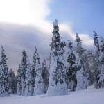 Снежный человек на Южном Урале