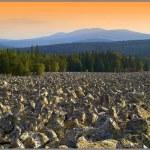 Каменные реки Южного Урала. Версия.