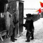 Уральский Мишка