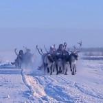Ямал – край первозданной природы