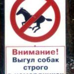 Челябинские собаки настолько суровы, что они  - лошади
