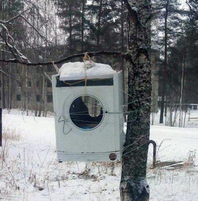 surovaya-chel-kormushka