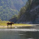 5 Сплав по реке Белая (Агидель)