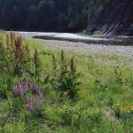 14 Сплав по реке Белая (Агидель)